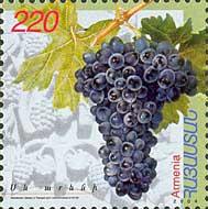 Grappes de raisins d'Arménie